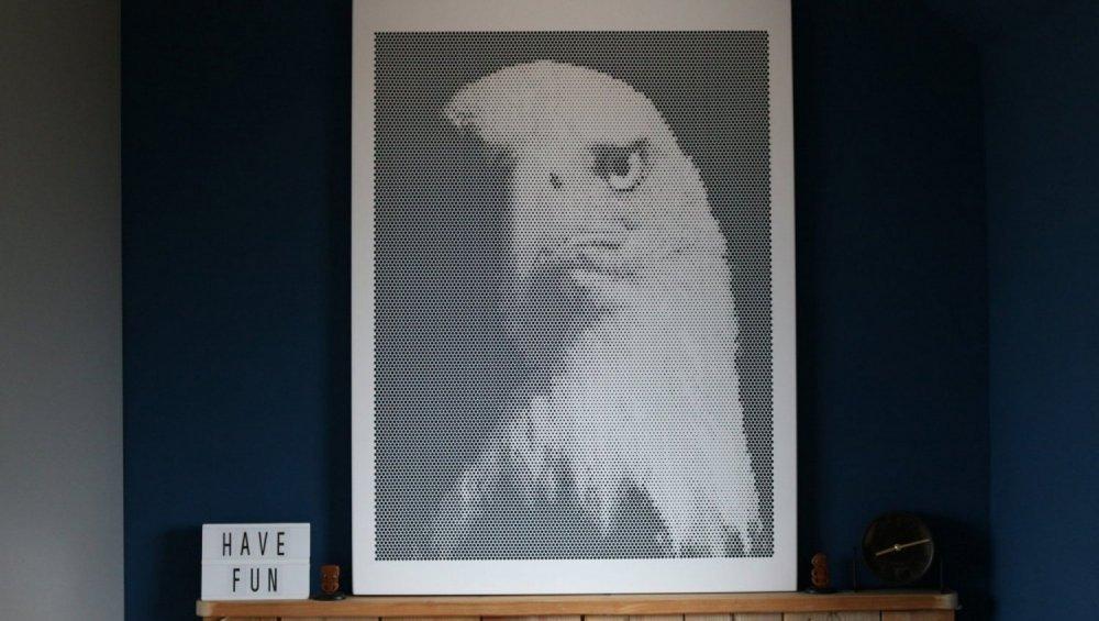 Spot-art geperforeerd paneel van adelaar, geproduceerd in 2mm dik aluminium, rondom gezette kanten en het oppervlak voorzien van een poedercoating. Geschikt als wanddecoratie en akoestisch paneel