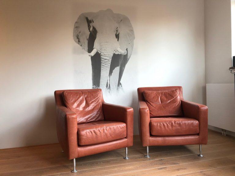 Muurprint olifant